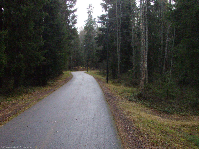 Finland - The Scent of Cinnamon