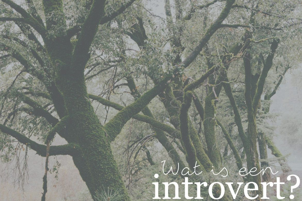 wat-is-een-introvert