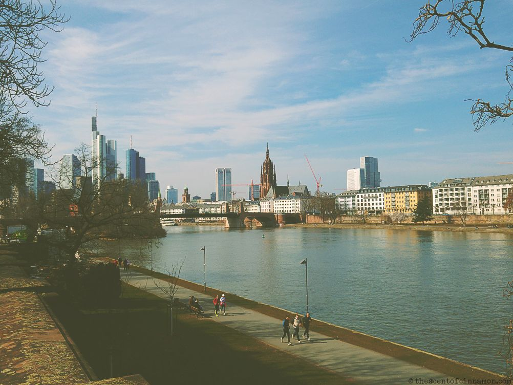 river_frankfurt_germany