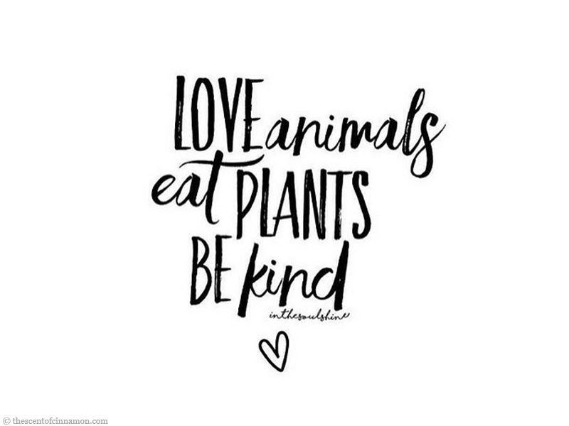 veganist worden pinterest